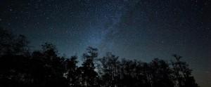 Night Sky Program cropped
