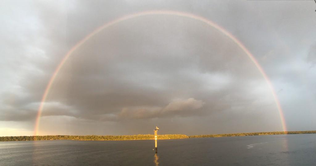 rainbow adam gelber 01.02.16