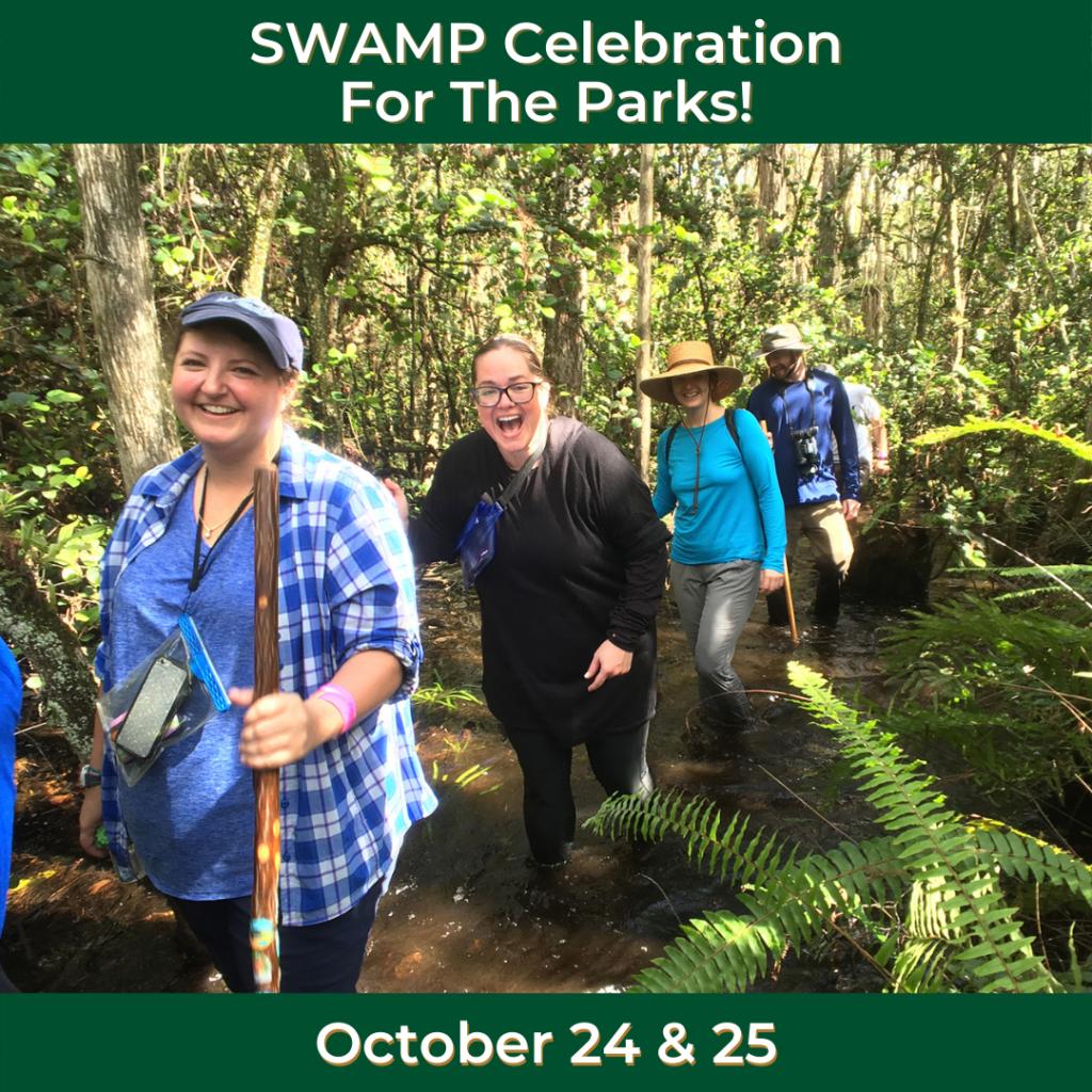 Swamp Walks